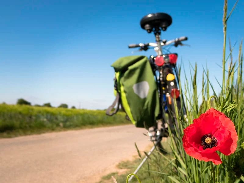 Día Mundial de la Bicicleta con Hacienda La Coracera