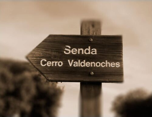 Senda del Cerro Valdenoches